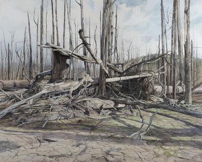 Nicholas Blowers, 'LAKEBED RUIN', 2017
