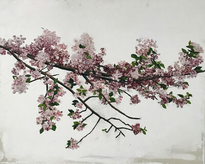 Sarah Myers, 'Apple Blossom Branch', 2017