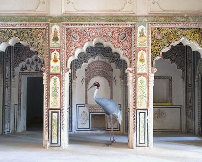 Karen Knorr, 'The Search for Sattva, Ahhichatragarh Fort, Nagaur', 2014