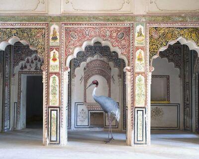 Karen Knorr, 'The Search for Sattva, Ahhichatragarh Fort, Nagaur', 2014