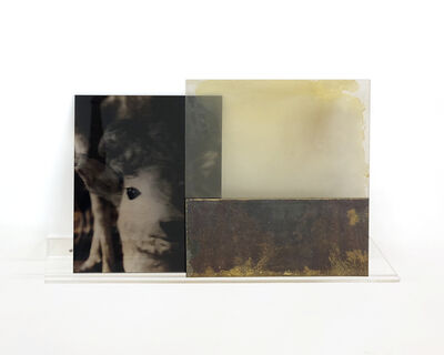 Janet Laurence, 'U.T. from 'Muses: Into Light'', 1996
