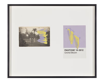 Tacita Dean, 'Pantone Pair (Orchid Bloom)', 2020