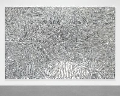 Tim Hawkinson, 'Lens', 2002