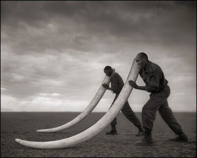 Nick Brandt, 'Two Rangers with Tusks of Killed Elephant, Amboseli 2011', 2011