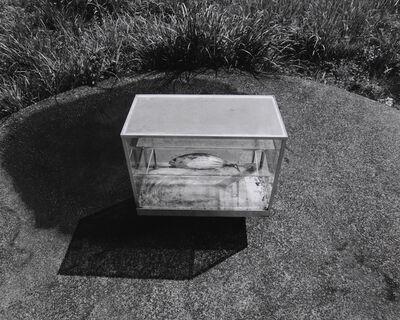 Hitoshi Fugo, 'On the Circle 60', 2008