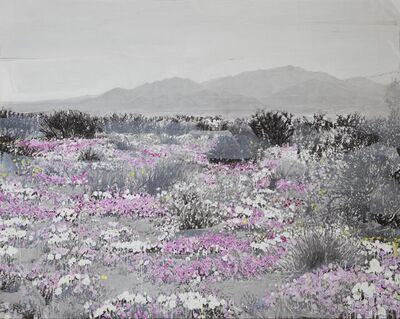 Ida Tursic & Wilfried Mille, 'Landscape and Pink and White', 2015