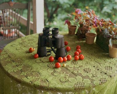 Shane Lavalette, 'Binoculars', 2011