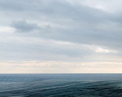 Laura Plageman, 'Cowells', 2013