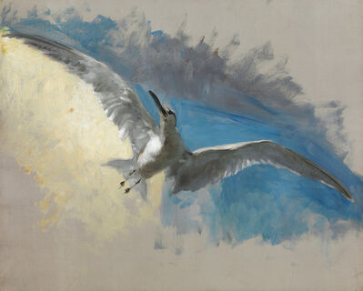 John Singer Sargent, 'Study for Triumph of Maria de Medici (Seagull in Flight)', 1877