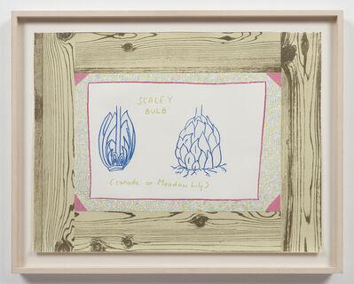 Ree Morton, 'Untitled (Woodgrain, Scaley Bulb)', 1974