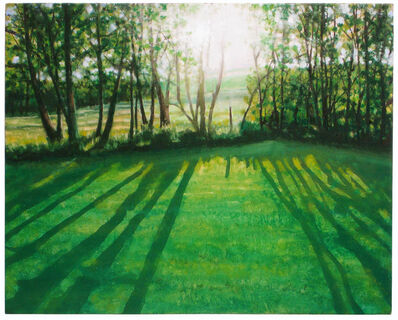Daniel Bodner, 'Poplar Trees 2', 2011