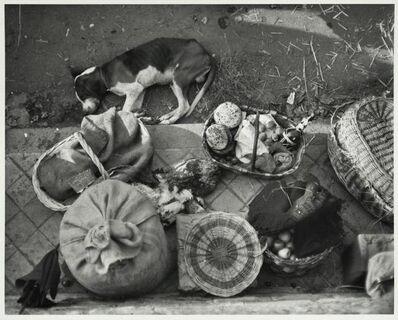 André Kertész, 'Saint Jean de Luze, France (market still life with dog) ', 1931