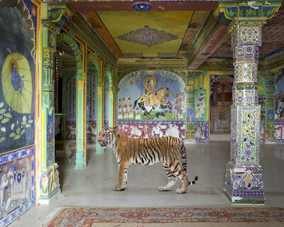 "Karen Knorr, 'Arjuna's Path, Junha Mahal, Dungarpur. From the series ""India Song""', 2014"