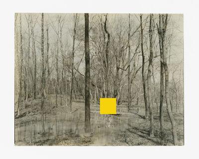 Edgar Martins, 'I Belong to the Cypress Hours  ', 2016