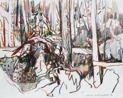 David Alexander, 'Snow Pond', 2015
