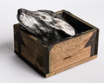 Elizabeth Jordan, 'Sculptureof deer head in wood box: 'Free me from the earth'', 2020