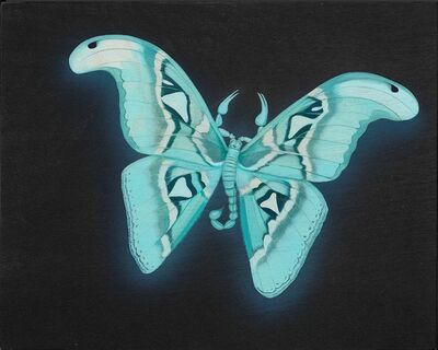 Tiffany Bozic, 'Glowing Atlas Moth', 2018