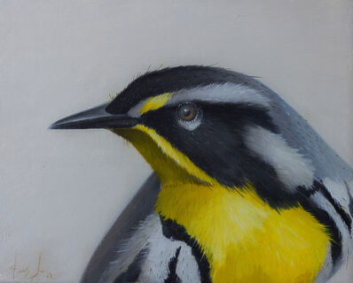 Herb Smith, 'Yellow Throated Warbler', 2017