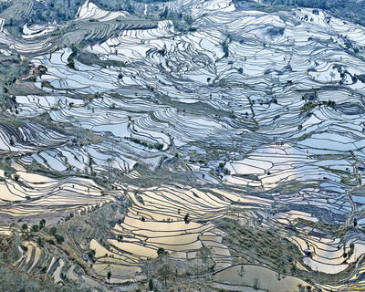 David Burdeny, 'Rice Terraces, (Laohuzui I), Yunnan, China', 2013