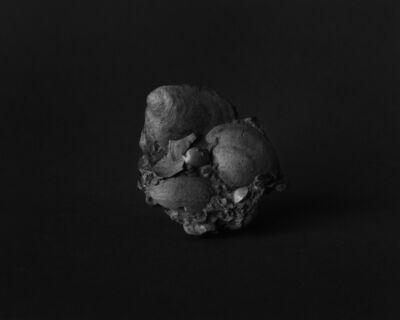 Fabio Barile, 'Fossils', 2016
