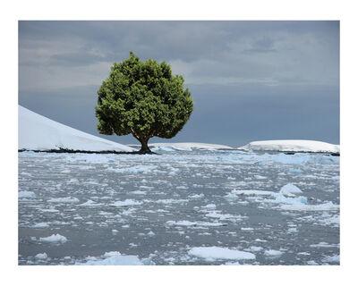 Max Steven Grossman, 'Antartica No. 3, ed. 1/5', 2010