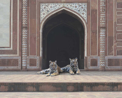 Karen Knorr, 'At the Edge of the Forest, Agravena, Agra'