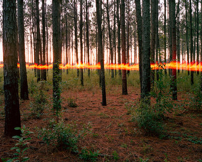 Jeremy Chandler, 'PINES FIRE HORIZON', 2016