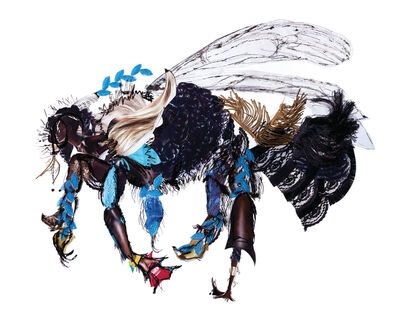 Dominique Paul, 'Rusty-patched Bumble Bee', 2019