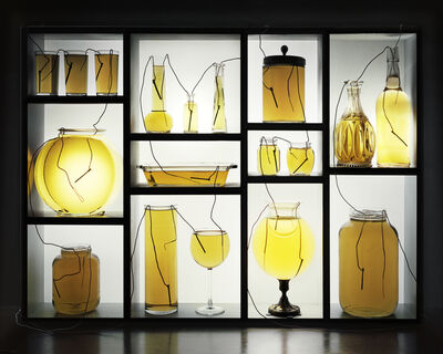 Caleb Charland, 'Vinegar Batteries with Glassware and Shelf', 2013
