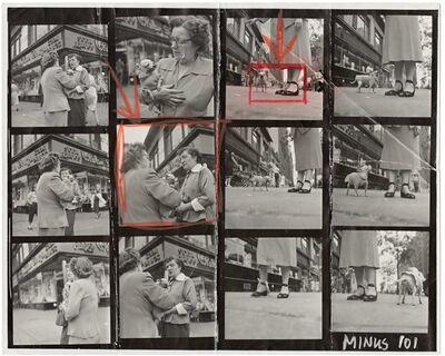 Elliott Erwitt, 'Chihuahua (New York City)', 1946
