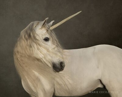 Marie Cecile Thijs, 'White Unicorn', 2009