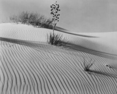 Brett Weston, 'White Sands', 1946