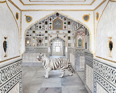 Karen Knorr, 'Tiger Breath, Sheesh Mahal, Amer Fort', 2020