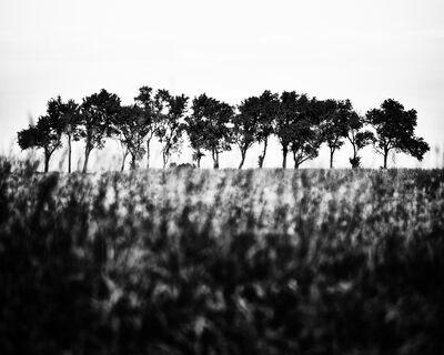 Stephan Anderson-Story, 'Horizon, Baldwin City, Kansas', 2015