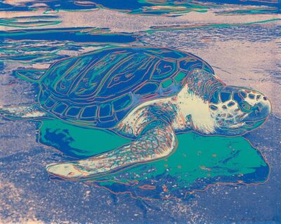 Andy Warhol, 'Turtle', 1985