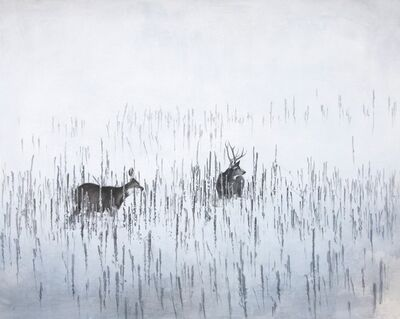 Robin Cole, 'January Deer', 2014