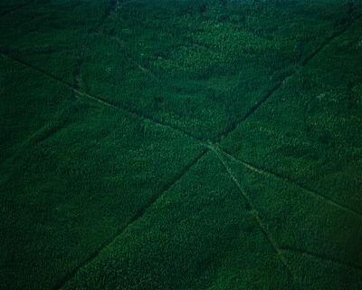 Eamon Mac Mahon, 'Cut Lines 2', 2005