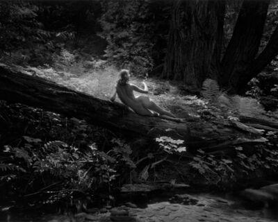Wynn Bullock, 'Nude on Log', 1954