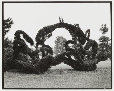 Mario del Curto, 'Pearl', 1998