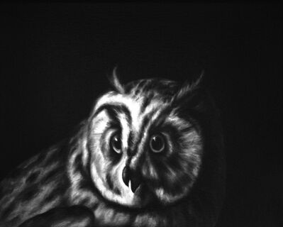 Shelley Reed, 'Owl (after Durant)', 2013