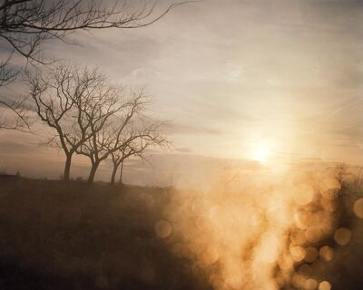 Todd Hido, 'Untitled 3114-B', 2002