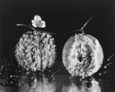 Michiko Kon (今 道子), 'Octopus and melon', 1989