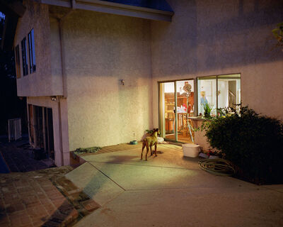 Larry Sultan, 'Dog at Night', 1999 printed 2013