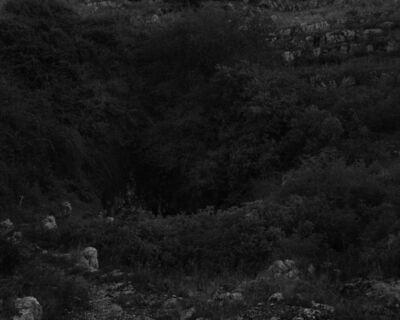 Fabio Barile, 'Sinkhole in the karst plateau of Murge in the Apulia Region, Italy.', 2015