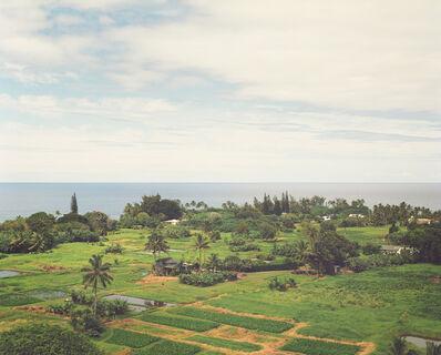 LM Chabot, 'Hawaii 26', ca. 2015