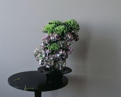 Saara Ekström, 'Frantic Sullenness', 2014