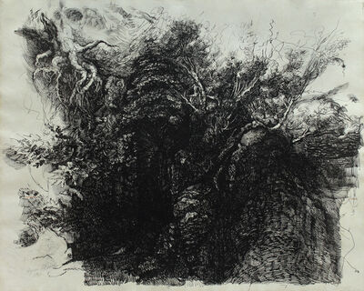 Hyman Bloom, 'Tree Study', ca. 1970