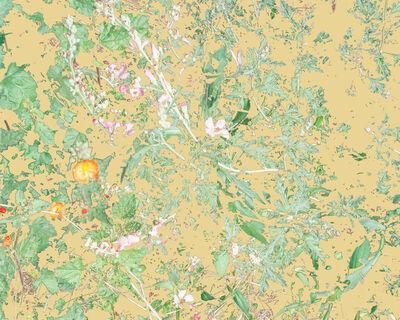 Aaron ROTHMAN, 'Wildflowers (PVGM2)', 2015