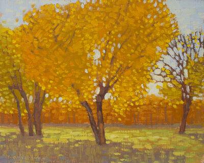 David Grossmann, 'Cottonwoods in Autumn Light', 2019
