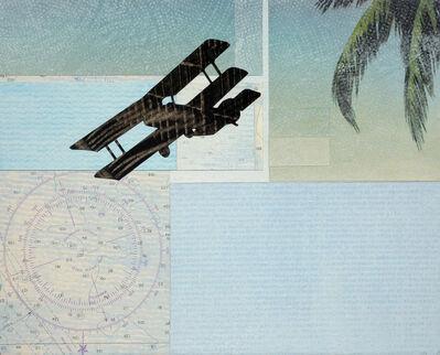 William Steiger, 'Coastal Flyover', 2018